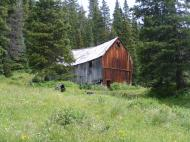 In some ways, now that nature has become dominant, it is a shame that this boarding house, at least, wasn't kept in good repair so that the public could stay and enjoy the tranquility now found in our Colorado mountains