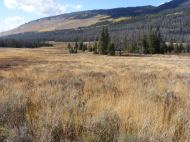 The great, open meadow of the Roaring Fork Basin