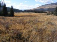Roaring Fork Basin