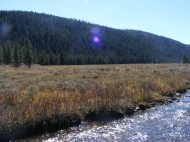 A fine fall day on Bacon Rind Creek in Yellowstone National Park