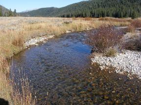 Bacon Rind Creek