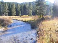 Bacon Rind Creek flows sedately through Yellowstone National Park