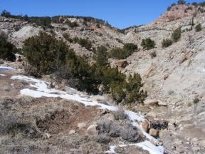 Along Fourmile Creek, north of Canyon City, sedimentary rock where dinosaur fossils are found