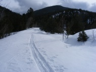 Blustery day on Old Monarch Pass near Tomichi Creek
