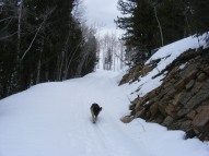 Leah on Old Monarch Pass near Tomichi Creek