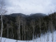 Clouds over bare aspen on Old Monarch Pass near Tomichi Creek