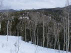 From Old Monarch Pass looking north into No Name Creek
