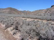 Dry Creek emitting from the foothills of the West Elk Mountains