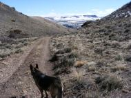 Leah scouting our route down Haystack Gulch
