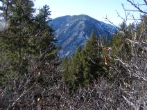 Near Hermit's Rest, a ridge covered with conifers