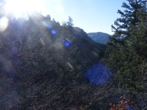 Sun rays on the Hermit's Rest Trail