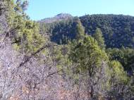 The view from the canyon's bottom on the Hermit's Rest Trail