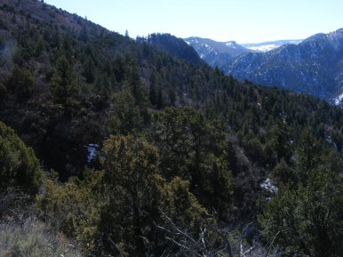One of the reasons it is called the Black Canyon of the Gunnison, on the Hermit's Rest Trail