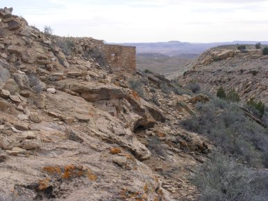 Ruins overlooking this finger of canyon that drains down to the San Juan River, part of the Cajon Unit