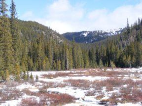 Shaw Ridge seen from Gold Creek near New Dollar Gulch