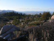 Drought stricken California, Plumas National Forest, near Milford