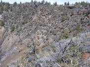 Rim of the Mammoth Crater that spewed so much lava across the landscape near Lava Beds National Monument