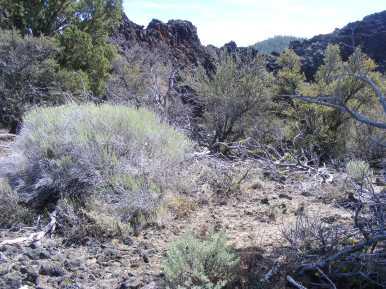 Stark landscape on the Big Nasty Trail, Lava Beds National Monument