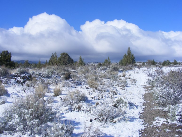 The remnants from the previous night's storm, to the west, while hiking on the Three Sisters Trail