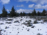Snowy landscape of the Three Sisters Trail, mid-April in Lava Beds National Monument