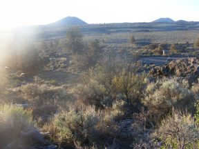 Early sunlight strikes the picnic area at Fleener Chimneys, Lava Beds National Monument