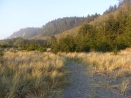 The sun sets over Gold Bluffs, Redwood National Park, the golden shafted light giving the bluffs their name