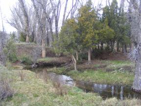 Rare, heavy flow on Cabin Creek