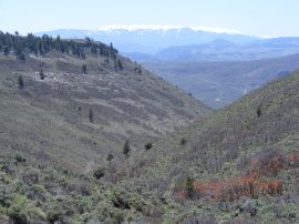 Near the head of Dillon Gulch, the Powderhorn Wilderness on the horizon, Cannibal Plateau shrouded in snow