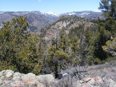 West Elk Creek from Dillon Mesa