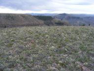 Atop the western lobe of Dillon Mesa