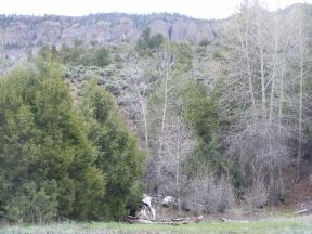 More hoodoos above West Elk Creek, thick vegetation down low