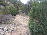 Small dry wash near Texas Creek Gulch