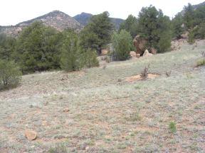 Near Reese Gulch and Trail 6035