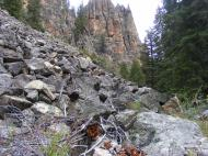 Granitic talus in Taylor Canyon
