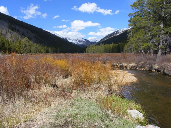 Late May on Middle Quartz Creek within the Gunnison National Forest