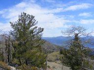Fine Spring day on the Rainbow Trail near Salida