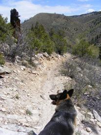 Leah on the Rainbow Trail