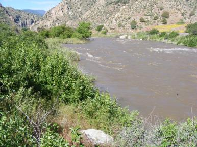 There isn't usually this much water in the Arkansas River near Coaldale
