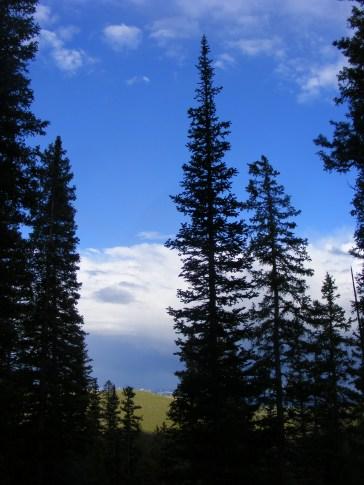 Returning along the Mill Lake Trail