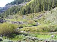 Talus slopes, newly leafed out aspen and swift water in Deadman Gulch below Rosebud Gulch