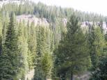 Rocky bluffs above Bear Creek