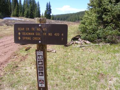 At the upper junction between the Bear Creek Trail and Spring Creek Road
