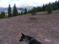 Leah on Reno Ridge, looking out at the Elk Mountains