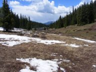 Walking down into the small gully adjacent to the Reno Ridge Trail, also known as Gunnison National Forest Trail 607