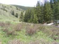 As I walk down the Deadman Gulch Trail