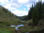Beaver dams on Deadman Gulch, the trail to the left