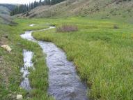 High runoff on Deadman Gulch above Bear Creek