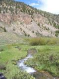 Looking downstream on Deadman Gulch between Rosebud Gulch and Spring Creek