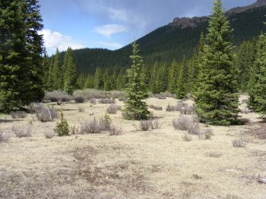 Just north of Bison Pass, the headwaters of Indian Creek