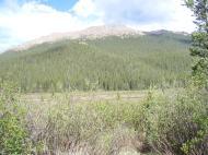 Bison Peak over Indian Creek's large meadow